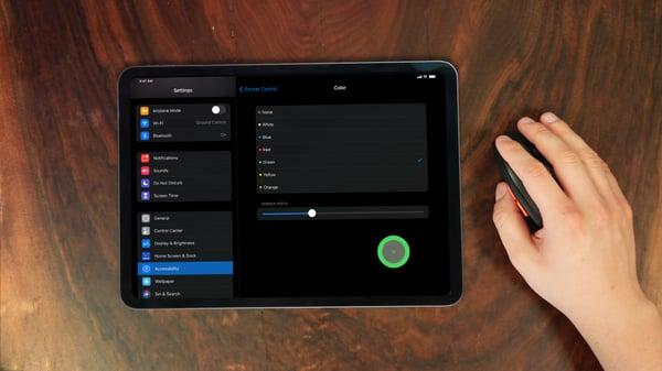 Customize iPad Mouse Settings
