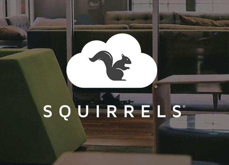 Meet Squirrels