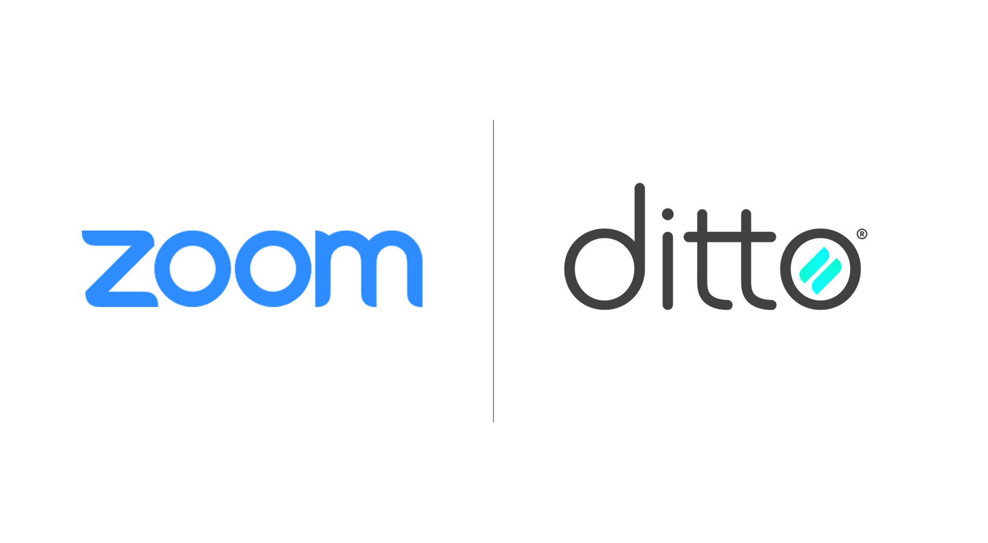 zoom and ditto logo
