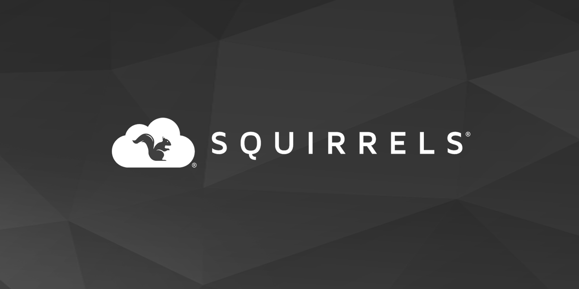 Squirrels | Creators of Ditto, Reflector and AirParrot