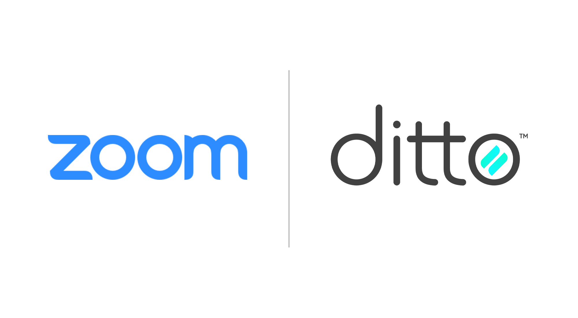 Ditto vs. Zoom Rooms
